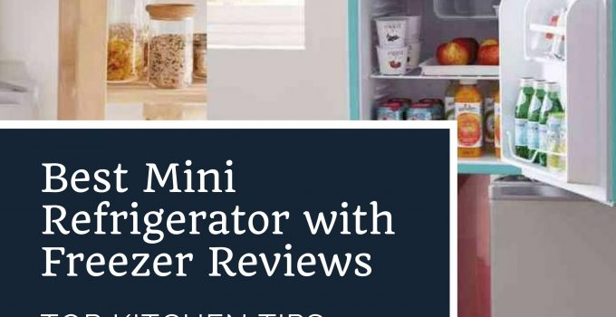 Best Mini Refrigerator with Freezer Reviews